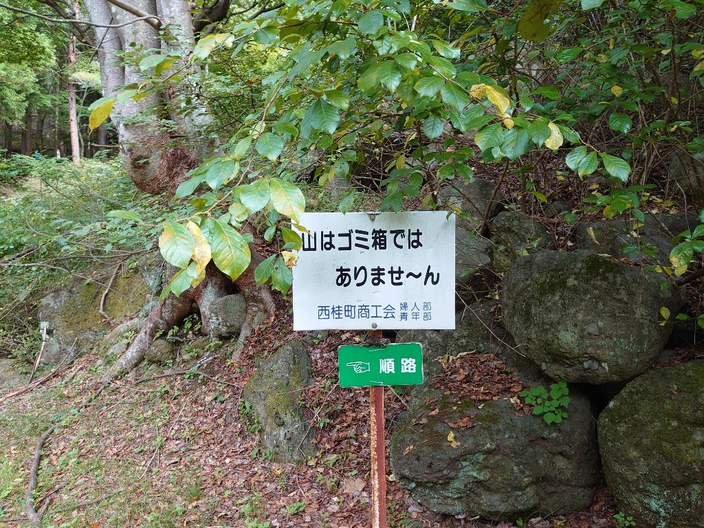 https://image.midnightblue.jp/blog/16027402659653.jpg